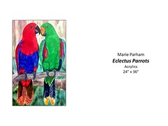 "Eclectus Parrots • <a style=""font-size:0.8em;"" href=""http://www.flickr.com/photos/124378531@N04/47679970841/"" target=""_blank"">View on Flickr</a>"