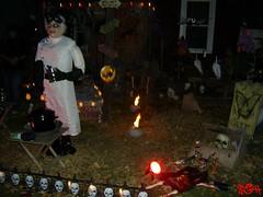 Halloween Decorations (StreetsOfHamilton) Tags: hamilton ontario canada hamiltonontario ontariocanada hamiltonontariocanada halloween halloweendecorations