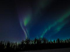 Aurora Borealis under Finnish night sky (The Quiet Wanderer) Tags: revontulet auroraborealis winter night cold
