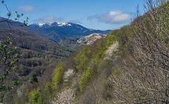 Col de Portet-d'Aspet (JeanJoachim) Tags: pentaxk5iis smcpentaxm12835mm
