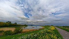 Dikeview At Oosterdijk (Alfred Grupstra) Tags: nature landscape summer sky outdoors cloudsky scenics water greencolor ruralscene blue river grass lake tree beautyinnature meadow springtime nonurbanscene cloudscape dike boats fowers rapeseed