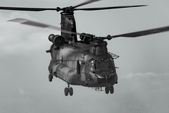 RNLAF_CH47D_D103_B&W_GLV5_APR2019_2 (Yannick VP - thank you for 1Mio views supporters!!) Tags: 2019 april lowflying glv5 oirschot shadow d103 chinook ch47 vertol boeing koninklijkeluchtmacht airforce netherlands royal klu rnlaf turboshaft turbine helo heli helikopter utility transport military