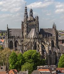 Kathedrale in s'Hertogenbosch (ulrichcziollek) Tags: niederlande shertogenbosch kirche kathedrale kirchenschiff gotik gotisch brabant