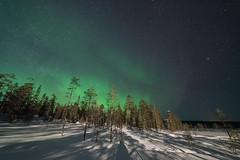 Finnland 2019 (Stefan Giese) Tags: nikon d750 finnland finland polarlicht auroraborealis aurora northernlights nacht sky nightsky sallatunturi