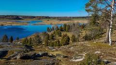 Angarnssjöängen Nature Reserve
