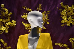 Store Window (dr_marvel) Tags: glossy smooth bald houston tx texas mannequin window store yellow white purple dress fashion