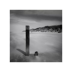 L 140 (geraldkoenigsohn) Tags: smartphone seaside mood storm wind monochrome bw bnw blackandwhite huaweip10 northsea
