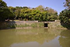 DSC_0065 (Wesh-Cacahuete) Tags: okinawa asianfood asie soleil vacances