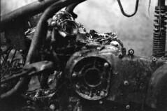 Industrial Series_Only Dirt Film: Kill me to the endoskeleton (onyricon) Tags: endoskeleton dark industrial analog gothic film motor