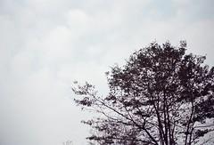 r001-027 (sunny wu 5430) Tags: om10 olympusom10 底片相機 底片攝影 追風135 rzr135