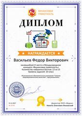 Diplom_proekta_finansy-school_ru_10744