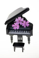 still-life 24-04-2019 005 (swissnature3) Tags: stilllife macro light flower piano toy