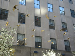 Flock of Gold Bird Mannequins 30 Rockefeller Plaza 6881 (Brechtbug) Tags: flock post easter birds 30 rock rockefeller plaza center fountain with fish riders off 5th ave near 49th 50th streets entrance sea creature tentacles nyc 042419 new york city octopus arms wrapping around statue sculpture april 2019 spring springtime