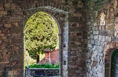 Entrata Borgo Castiglione del Terziere (danilocolombo69) Tags: danilocolombo69 danilocolombo borgo entrata arco leone castiglionedelterziere nikonclubit