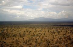 Ngorongoro Conservation Area from the air, Tanzania (inyathi) Tags: africa eastafrica tanzania aerialphotos ngorongoroconservationarea nca serengeti ndutu flights flying
