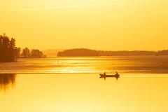 Rowing in the evening (VisitLakeland) Tags: finland kuopio lakeland auringonlasku boat evening ilta järvi lake luonto maisema nature outdoor row rowing scenery soutaa sunset vene