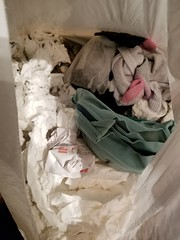 20190418_002247 (math33math) Tags: waste bag basura garbage sac trash rubbish poubelle poubelles déchets déchet discarded bra sportbra undergarnment underwear undies
