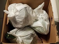 20190325_010825 (math33math) Tags: waste bag basura garbage sac trash rubbish poubelle poubelles déchets déchet discarded
