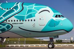 F-WWAF // JA382A All Nippon Airways Airbus A380-841 MSN 263 (Florent Péraudeau) Tags: fwwaf ja382a all nippon airways airbus a380841 msn 263 a380 388 841 rolls royce ana flyingturtles flying turtles japan japanese kaitheflyingturtle kai