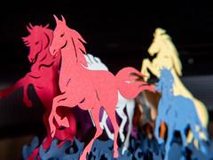 Coloured Horses (Andy Sut) Tags: galloping 2d bokeh closeup macro household model ornament colour horses lumix andysutton bridgecamera amateur panasonic
