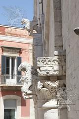 Ruvo_di_Puglia_2019_03
