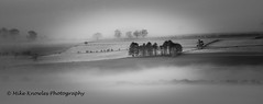 Inversion (mikeknowles60) Tags: cloud trees woods canon canon650d cloudinversion fog mist hartsidepass glassonby cumbria northpennines