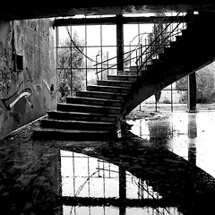 Abandoned Syrian Military Headquarters (oxfordblues84) Tags: blackandwhitearchitectureinteriors bw golanheights israel architecture building interior graffiti abandonedsyrianbuilding syrianbuilding oat overseasadventuretravel abandonedsyrianmilitaryheadquarters lobby staircase water puddle lobbystaircase reflection reflections buildinginterior abandonedbuildinginterior blackandwhite