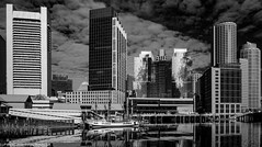 D7K_0448 (Colin McIntosh) Tags: 2019 boston infrared
