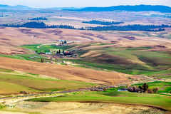 Palouse Farmland (Just Used Pixels) Tags: barns farms palouse washington colfax unitedstatesofamerica steptoe butte scenic landscape