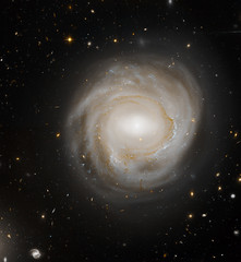 NGC 4921 - HST (LaydeeDem) Tags: galaxy spiral hubble myhubblepictures hst nasa esa