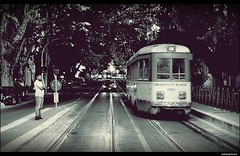 Tram vs. Car (vadaszg73) Tags: tram trolley tramway electro tramcar streetcar photograph photos photo photographer car black blackandwhite city rome roma italia italy nikon road rout flickr follow faves