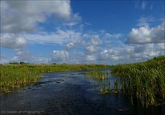 The human spirit needs places.... (itucker, thanks for 5+ million views!) Tags: hggt landscape florida everglades floridaeverglades coth5