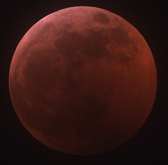 Lunar Eclipse 2019-01-20 1 (ceguy) Tags: moon astrophotography 月 lunar eclipse