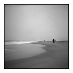 Assateague Island (Sergei Prischep) Tags: voigtländersuperb1934 f35 skopar fuji neopan acros100 d76 6x6 120 film