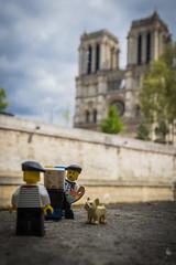 Marcel, a Parisian in Paris (Portrait at Notre Dame) (2017) #TBT (Ballou34) Tags: 2017 7dmark2 7dmarkii 7d2 7dii afol ballou34 canon canon7dmarkii canon7dii eos eos7dmarkii eos7d2 eos7dii flickr lego legographer legography minifigures photography stuckinplastic toy toyphotography toys paris îledefrance france stuck in plastic marcel parisian painter dog notre dame tree