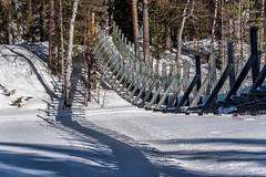 Finnland 2019 (Stefan Giese) Tags: nikon d750 finnland finland oulanka nationalpark 28300mm afs28300mmf3556 brücke bridge händebrücke