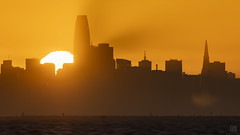 SF Sunset 3 (lycheng99) Tags: sunset sfbayarea sf sfskyline howsfseessf sanfrancisco sanfranciscobayarea sanfranciscotravel sun touchdown sky orange nature landscape explore water bay travel california goldenmoment