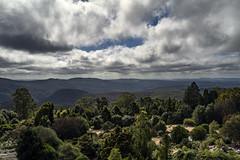 Blue Mountains (Photos By Dlee) Tags: sonyalphaa7iii sonya7iii sonya73 sony sonyalpha mirrorless fullframe fullframemirrorless tamron2875mmf28diiiirxd tamron zoom tamron2875mmf28 photo photosbydlee photography australia sydney newsouthwales nsw autumn fall seasons bluemountains nature