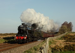8F+Bullied (Jacobite52) Tags: 8f bullied 48151 35018 bil britishindialine lms southern railway train steam wcrc mainlinesteam