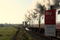 Stop (Jacobite52) Tags: 8f 48151 35018 bil britishindialine railway train steam wcrc mainlinesteam bullied southern