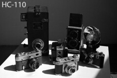 DevTest_HC110 (Mark Dalzell) Tags: black white developing test bw nikon f3 f3hp kodak tmax tmax400 film xtol sprint sprintsystems d76 rodinal hc110 diafine caffenol stand standdevelop standdevelopment fpp filmphotographyproject