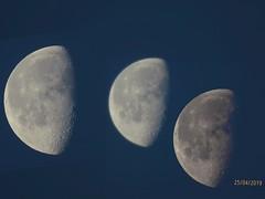 Dreierlei Mondphotos - Collage - Canon PowerShot SX70 HS - moons (eagle1effi) Tags: moon luna mond canon powershot sx70 hs canonpowershotsx70hs collage doppelbelichtung sx70hs eagle1effi bridgecamera powershotsx70 sx70best bestof