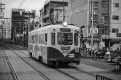 Hankai Tramway(阪堺電車) (Hideki-I) Tags: hankai hankaitramway 阪堺電車 osaka japan nikon z7 2470 tram railway train monochrome bw blackandwhite 白黒 黑白 大阪 日本