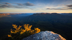 Solitary from Sublime (Martin Canning) Tags: 1740 australia bluemountains canon canon5dmarkii leefilters leura martincanning martincanningcom nsw newsouthwales sublimelookout landscape light longexposure mountain photography sunset twilight valley