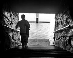 (Cindy en Israel) Tags: escaleras luz descenso hombre persona robado candid cándida baranda felpudo blackandwhite blancoynegro monocromo monochrome paredes textura acuario paseo viaje turismo travel tour eilat israel