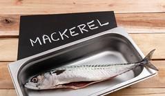 Mackerel (annick vanderschelden) Tags: mackerel fish food protein gutted recipient stainlesssteel kitchen blackboard chalk word plank wood culinary foodsafe cooled storage belgium