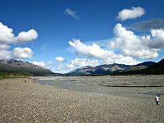 Toklat River View (R D C) Tags: 2012 ak denalinationalpark nationalparks alaska mountains