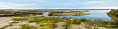 2762 Delta del Ebro, Tarragona (Ricard Gabarrús) Tags: mar rio delta agua water ebro playa natura naturaleza ricardgabarrus olympus ricgaba rural pano panoramica nubes cielo