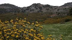 20190501_152322 (uweschami) Tags: griechenland kreta matala meer höhlen zeus