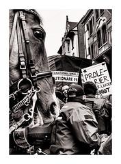 1.Mai - Stuttgart (sven.scholz) Tags: 1mai demonstration stuttgart polizei polizeigewalt leica 35mm blackwhitephotos blackblock
